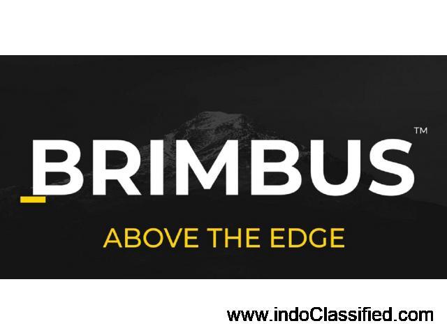 Best Creative Designing Agency in India - Brimbus - 1
