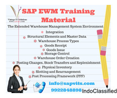 SAP EWMS Online Training in Pune