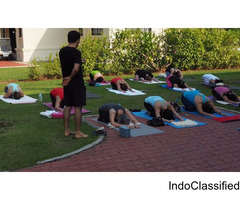 Yoga and Meditation Teacher Training Rishikesh
