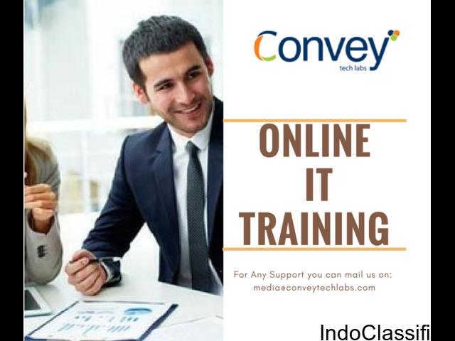 Best Online IT Training in India