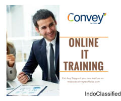 Best Online IT Training in India