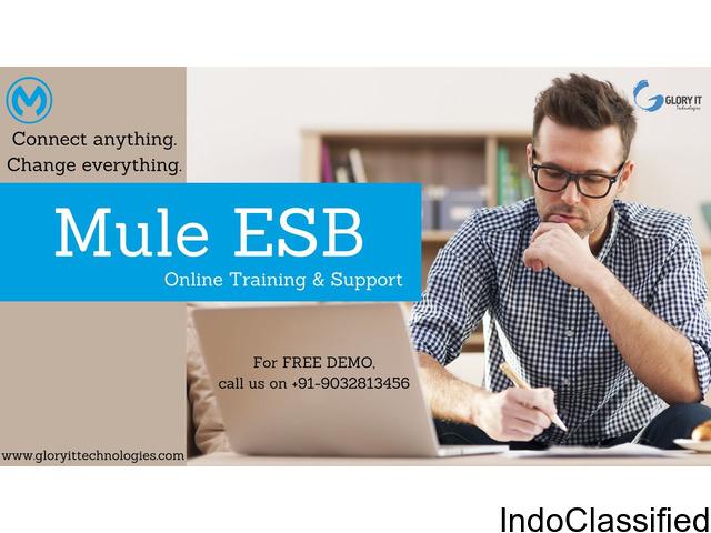 Mule ESB online training by Glory IT Technologies