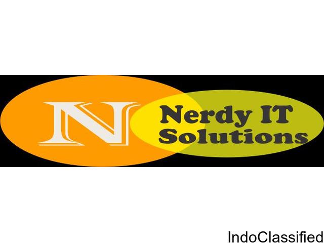 Nerdy IT Solutions Pvt. Ltd.