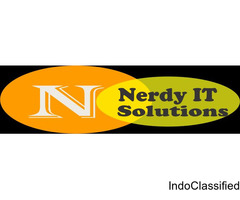 Nerdy IT Solutions Pvt. Ltd.